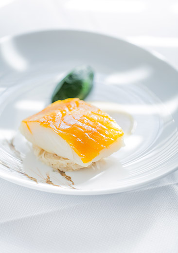 musiam-rech-pave-haddock